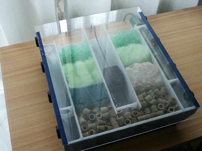 Progettazione filtro acquario di renato chiesa for Filtro per acquario tartarughe
